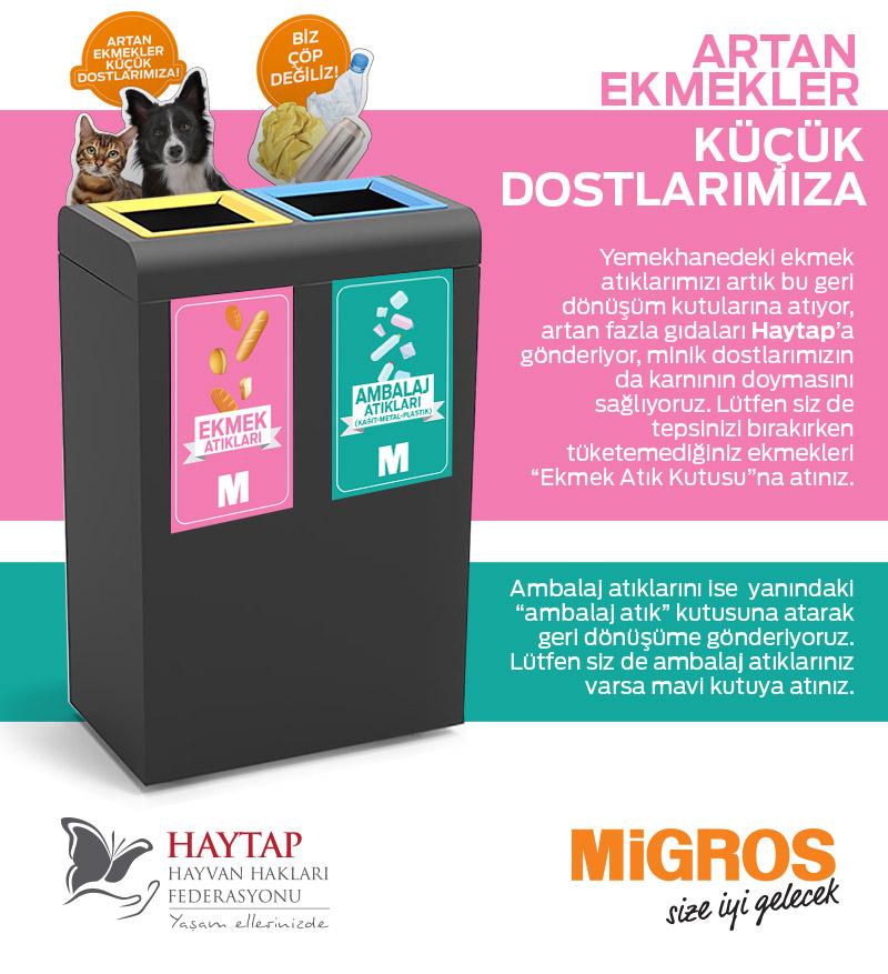 haytap-mail